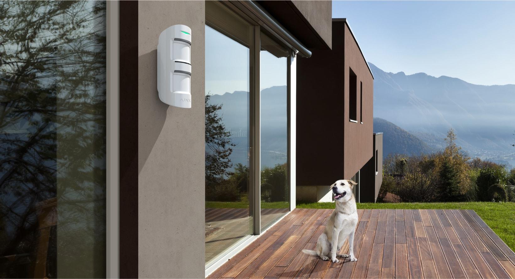 Outdoor Detector